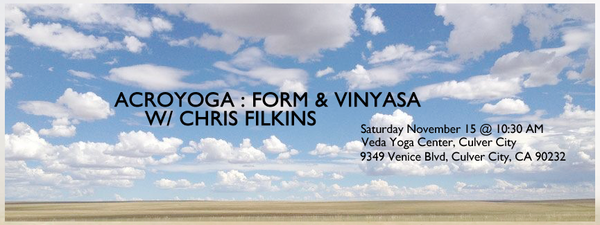 AcroYoga : Form & Vinyasa November 15, 2014